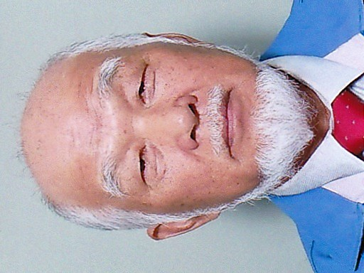 Tokushima Kawauchi Shiro.jpg